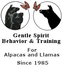 Gentle Spirit Beahvior and Training Logo