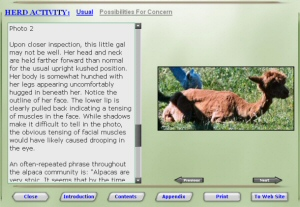 Alpaca Talk Chapter showing one of several pictures.