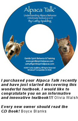 Alpaca Talk, Understanding Alpaca Behavior by Cathy Spalding