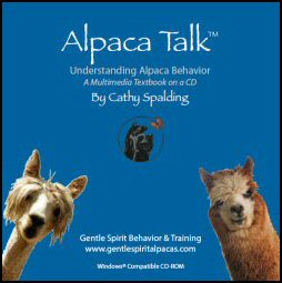 Alpaca Talk: Understanding Alpaca Behavior. Multimedia Textbook on a CD. By Cathy Spalding