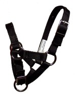 Gentle Adjustable Halter